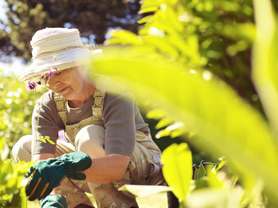 How to Nurture the Spirit During Retirement Years - Blue Chip Financial